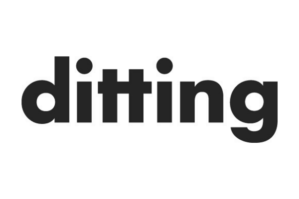Ditting Grey Logo